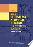 Barr el sistema nervioso humano