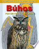 Buhos: Por dentro y por fuera (Owls: Inside and Out)