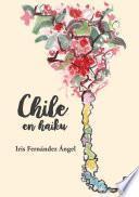 Chile en haiku