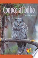 Conoce al buho (An Owl, That's Who!)