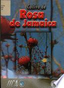 Cultivo de la Rosa de Jamaica Hibiscus Sabdariffa L