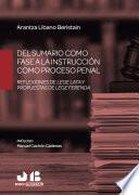 Del sumario como fase a la instrucción como proceso penal