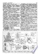 Diccionario Karten ilustrado