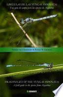 Dragonflies of the Yungas (Odonata)