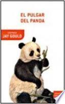 El pulgar del panda