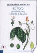El Yoco (Paullinia yoco)