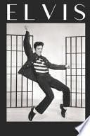 Elvis Planificador