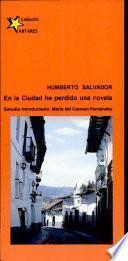 En la ciudad he perdido una novela
