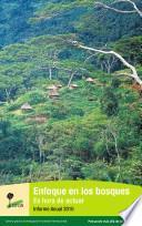 Enfoque en los bosques : Es hora de actuar: informe Anual 2010