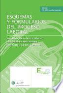 Esquemas Y Formularios Del Proceso Laboral