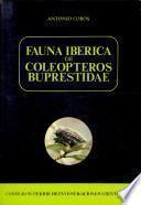 Fauna ibérica de Coleópteros Buprestidae