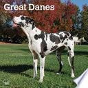 Great Danes International - Dänische Doggen 2021 - 18-Monatskalender Mit Freier DogDays-App