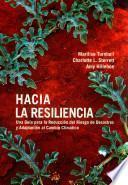Hacia la Resiliencia