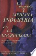 La pequeña y mediana industria en la encrucijada