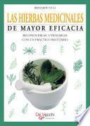 Las hierbas medicinales de mayor eficacia