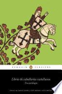 Libros de caballerías castellanos (Los mejores clásicos)