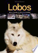 Lobos. Mitos y leyendas. El lobo en la actualidad