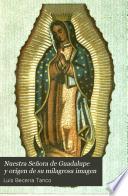Nuestra Señora de Guadalupe y orígen de su milagrosa imagen