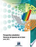 Perspectiva estadística. Veracruz de Ignacio de la Llave. 2000-2013