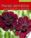 Plantas aromáticas para balcón y terraza