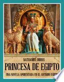 Princesa De Egipto