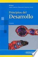 Principios Del Desarrollo / Principles of Development